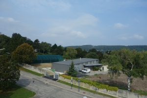 Friedhofsgärtnerei mit neuem Folientunnel